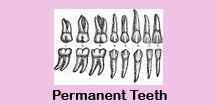 Dental treatment,Dental treatment in India